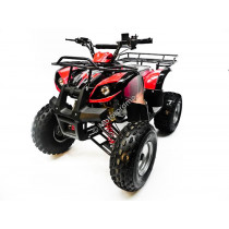 Kinderquad Quad Atv 110cc 125cc MTX cross rood
