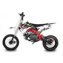 Dirtbike Pitbike 125cc 4takt Sky RS50 Racing wit