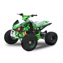 Kinderquad Quad Atv 125cc Rally GTS